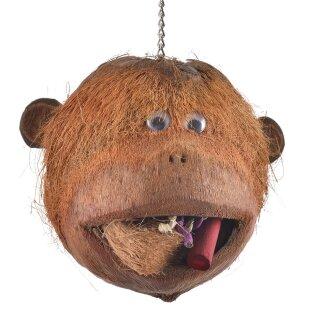 Coco Monkey - Kokosnuss zum Knabbern